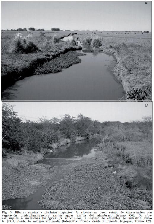 Evaluación Ambiental - Calidad del Agua